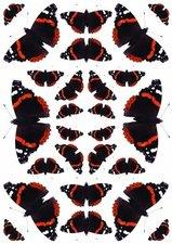 Fietsstickers vlinders zwart-rood