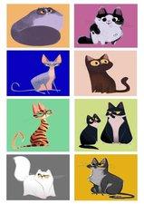Fietsstickers katten multicolor