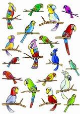 Fietsstickers bonte papegaaien