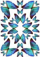 Fietsstickers vlinders groen-blauw
