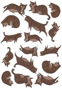 Fietsstickers kat en muis