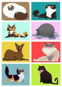 Fietsstickers diverse katten